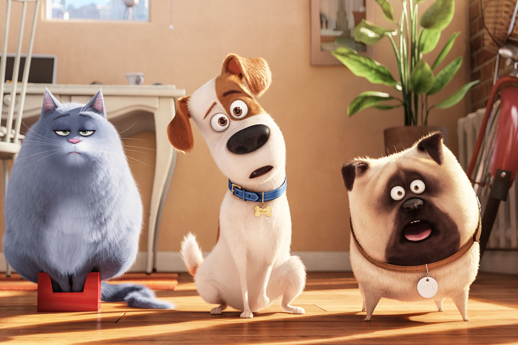 """""""Who wouldn't want to see that?"""" – A Chat with The Secret Life of Pets Writer Brian Lynch"""