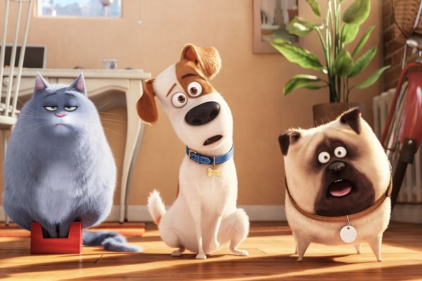 """Who wouldn't want to see that?"" – A Chat with The Secret Life of Pets Writer Brian Lynch"